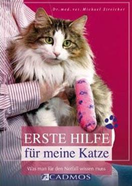 Erste-Hilfe-bei-Katzen